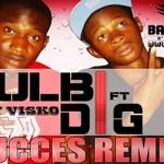 DIG DIO Feat. BOULBI - SUCCES (REMIX) (SON)