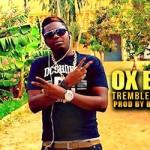 OX B - TREMBLEMENT DE TERRE (SON)