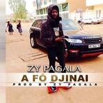 ZY PAGALA - A FÔ DJINAI
