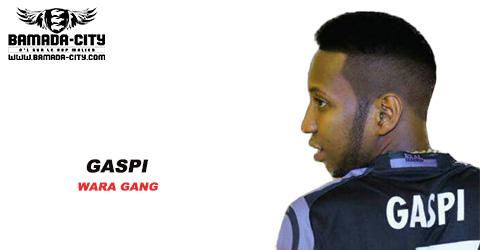 GASPI - WARA GANG