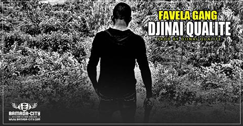 DJINAI QUALITÉ - FAVELA GANG (SON)