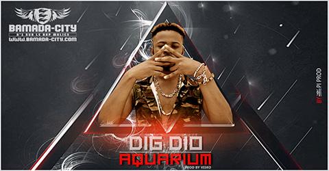 DIG DIO - AQUARIUM - Prod