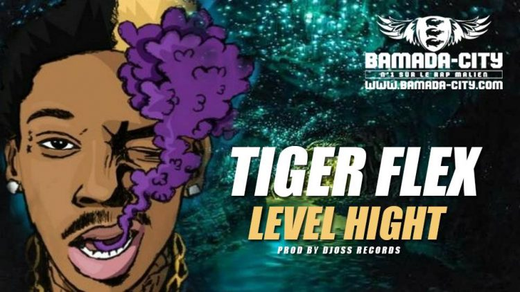 TIGER FLEX - LEVEL HIGHT Prod by DJOSS RECORDS