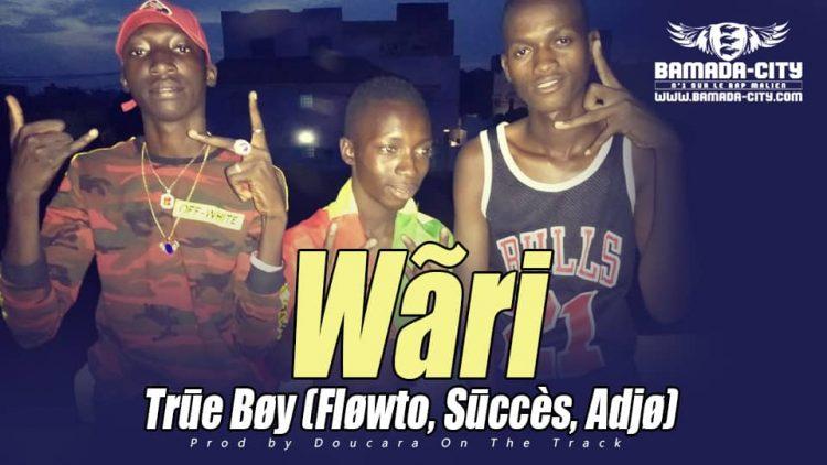 TRUE BOY - WARI
