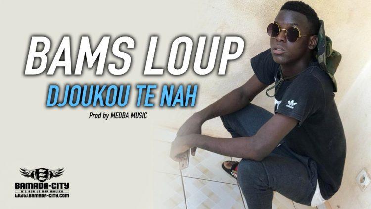 BAMS LOUP - DJOUKOU TE NAH Prod by MEDBA MUSIC