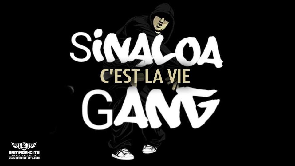 SINALOA GANG - C'EST LA VIE - Prod by GABIDOU ON THE TRACK